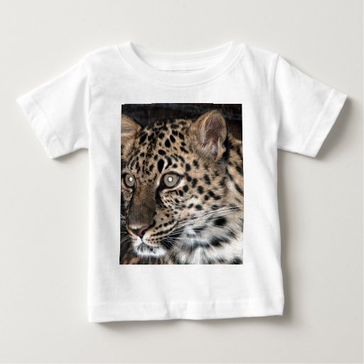 Leopard stare baby T-Shirt