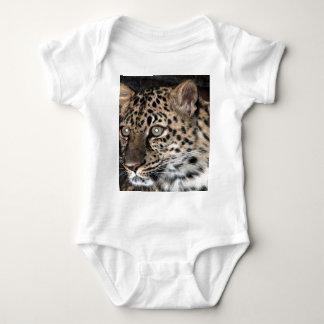 Leopard stare shirts