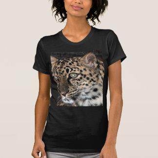 Leopard stare t-shirts