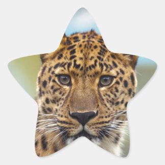 Leopard Stickers