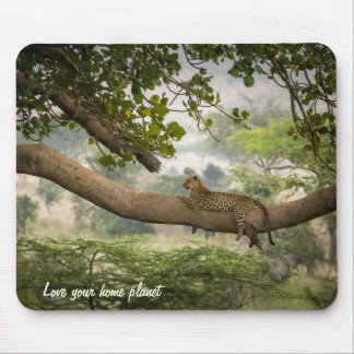 Leopard Tree Mouse Pad
