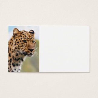Leopard Wild Cats Business Card
