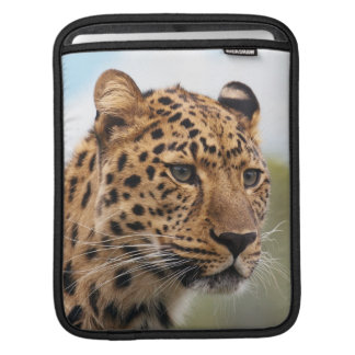 Leopard Wild Cats Sleeves For MacBook Air