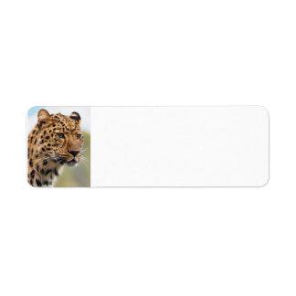 Leopard Wild Cats Label