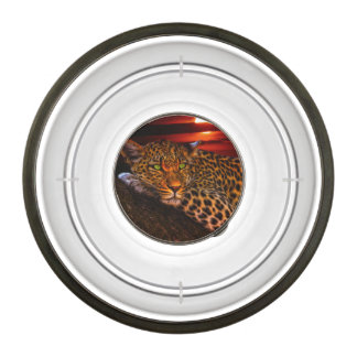 Leopard with Sunset Bowl