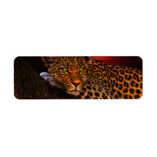Leopard with Sunset Label