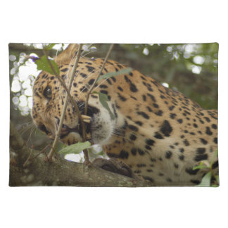LeopardCheetaro008 Cloth Placemat