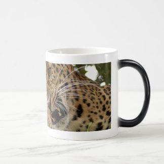 LeopardCheetaro009 Coffee Mug