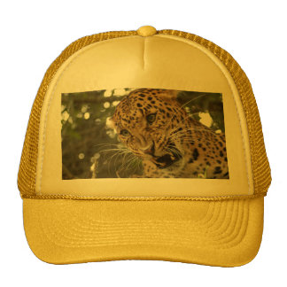 LeopardCheetaro009 Trucker Hat
