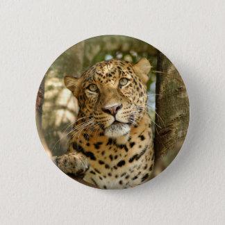 LeopardCheetaro013 Button