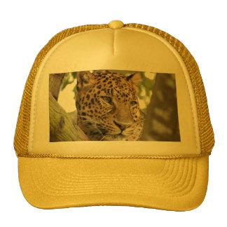LeopardCheetaro016 Trucker Hat