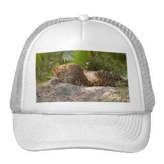 LeopardCheetaro017 Trucker Hat