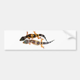 Leopardgecko couple bumper sticker