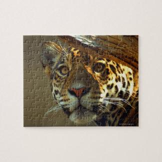 leopardo 2 puzzles con fotos