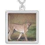 leopardo 3 colgante cuadrado