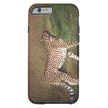 leopardo 3 funda para iPhone 6 tough