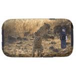 Leopardo africano en las piernas traseras, Namibia Galaxy S3 Protector