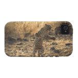 Leopardo africano en las piernas traseras, Namibia Vibe iPhone 4 Fundas