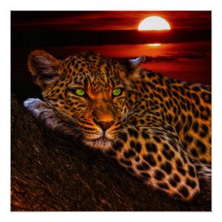 Leopardo con puesta del sol perfect poster