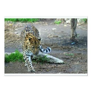 """Leopardo de Amur Invitación 5"""" X 7"""""""