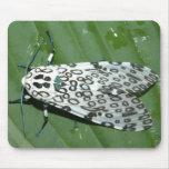 leopardo de la polilla tapetes de ratón