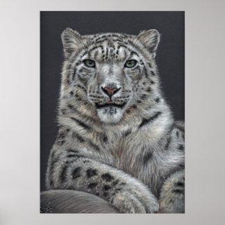 Leopardo de nieve - Snow leopardo Impresiones