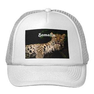 Leopardo de Somalia