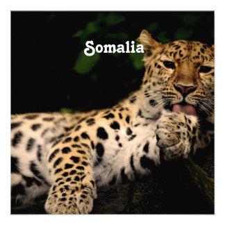Leopardo de Somalia Invitacion Personalizada