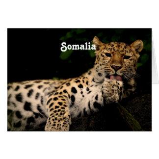 Leopardo de Somalia Felicitaciones