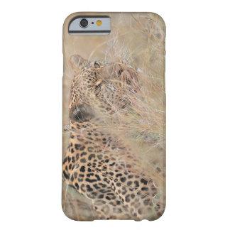 Leopardo de vagabundeo que oculta en prado