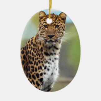 Leopardo Adorno Ovalado De Cerámica