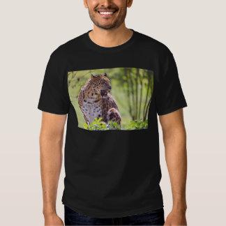 Leopardo del primer en la vegetación poleras