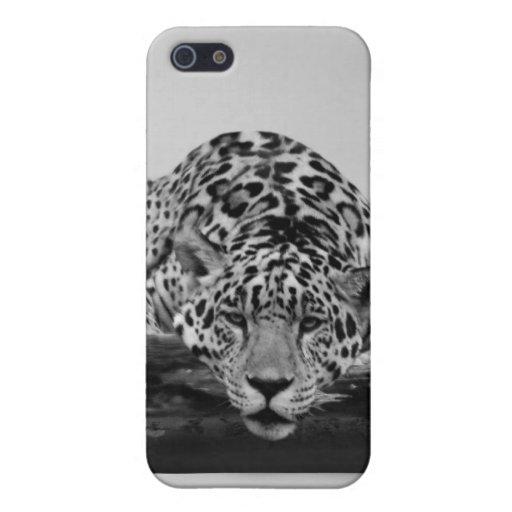 Leopardo en blanco y negro iPhone 5 carcasas
