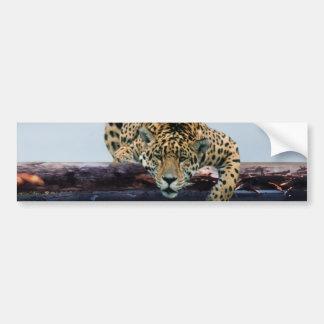 Leopardo en el árbol 1 pegatina para auto