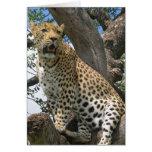Leopardo en tarjeta de nota del árbol