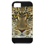 Leopardo feroz iPhone 5 Case-Mate protectores