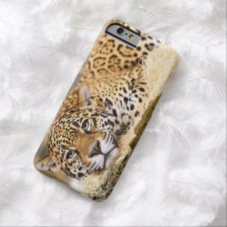 Leopardo Funda De iPhone 6 Barely There