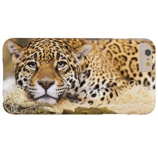 Leopardo Funda De iPhone 6 Plus Barely There