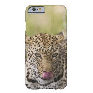 Leopardo Funda Para iPhone 6 Barely There