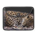 """Leopardo MacBook Pro 13"""" el dormir manga de la ale Fundas Para Macbooks"""