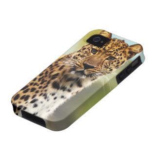 Leopardo majestuoso iPhone 4/4S carcasas