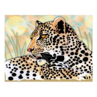 leopardo manchado tarjeta postal