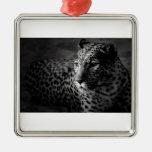 Leopardo Ornamento De Reyes Magos