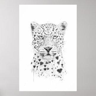 Leopardo precioso póster