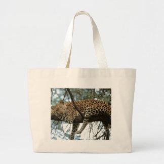 Leopardo que descansa en árbol bolsa