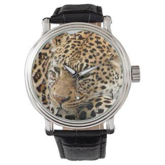 Leopardo Reloj