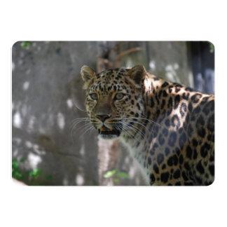 """Leopardo salvaje de Amur Invitación 5"""" X 7"""""""