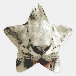 Leopardo salvaje calcomanías forma de estrella personalizadas