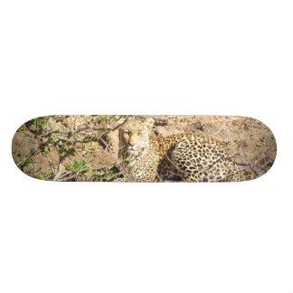 Leopardo Skate Boards