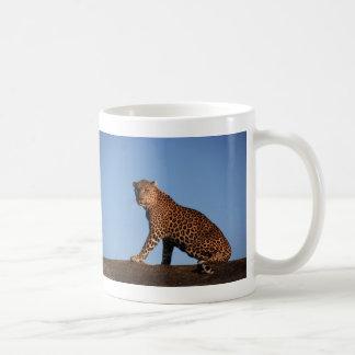 Leopardo solitario tazas de café